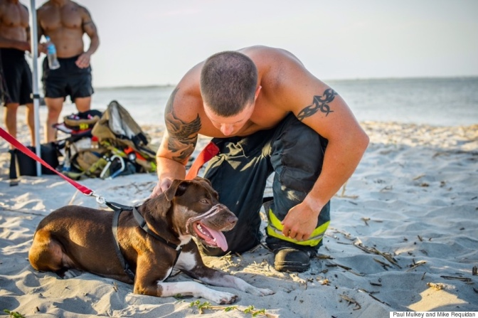 Here's A New Calendar With Sexy, Shirtless Firemen Holding a Dog (Woof!)